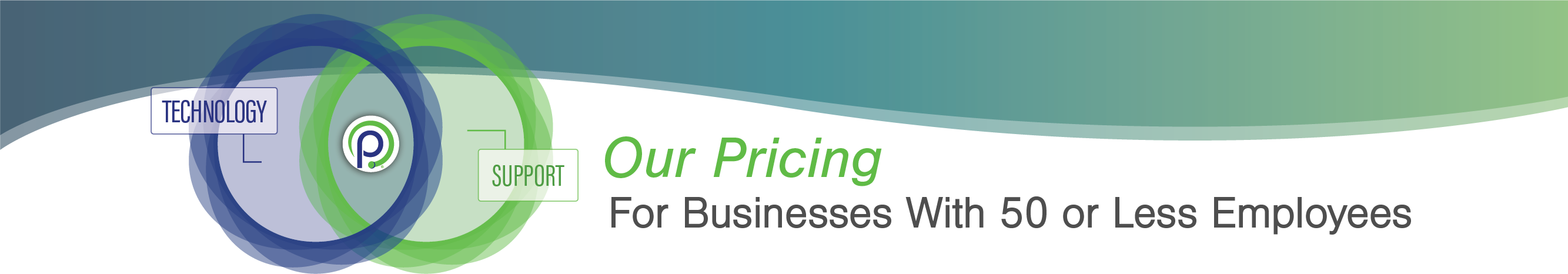 Payroll Processing Small Business Pricing